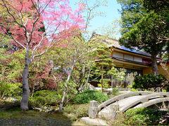 まず最初に向かったのは、八雲町の梅村庭園。  明治末期から昭和初期にかけて造成された池泉回遊式庭園です。  春紅葉の木々が赤く染まり、とっても綺麗♪