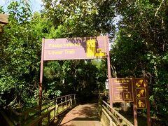 Lower Trail 1400mの遊歩道