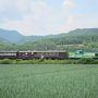 2013年:夏!家族で北海道(富良野&旭川&札幌)旅行!(3泊4日)