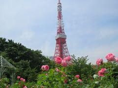 ザプリンスパークタワーの敷地内にある庭園と東京タワー