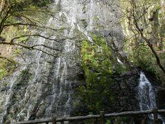 """その駐車スペースから100m程歩くと『龍双ヶ滝』の雄姿が見えます! この滝は道路脇にある""""超お手軽滝""""なのです!"""