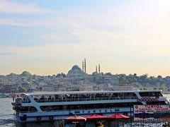 ユスキュダル方面への定期船を見つけた。 船に乗り、ユスキュダルを渡り、黄昏るユスキュダルの港から、夕陽に染まるイスタンブールの旧市街の様子を眺めよう♪という計画だ。  母と私が定期船の切符を買おうとしていたその時、後ろから声をかけられた。 私たちに声をかけたのは、小柄なおじいさん。  おじいさんの手にはしわくちゃのチラシが一枚。 彼はトルコ語で私たちに何かを話しかける。 言葉は分からないが、言っている内容は理解できる。  ボスポラス海峡のクルーズ船。 通常ならば20ユーロだが、今日の最終便の夕陽クルーズを20トルコリラにする…という内容の様だ。 通常料金約2800円のボスポラス海峡のクルーズ線が、次の便なら特価;1000円で乗れちゃうよ〜という甘い誘惑だ。  ちょっと胡散臭いかな…。 危ないかな…。  でも、海峡クルーズには興味があった。 計画段階では海峡クルーズにはイスタンブールでの最終日に参加しようと考えていたのだが、どうやら天気予報によれば翌日は1日中、雨が降り続く予報。 雨の中の海峡クルーズはあり得ない…。  だとしたら、チャンスはこの時が最後。  数秒間という短い時間の中で、頭の中では様々な考えが蠢く。 この客引きのおじいさんを信用して良いものかどうなのか…?  母を見ると、完全に「判断は君にゆだねる」という表情だ。 ここは、イチかバチか。  このおじいさんを信じてみよう…。