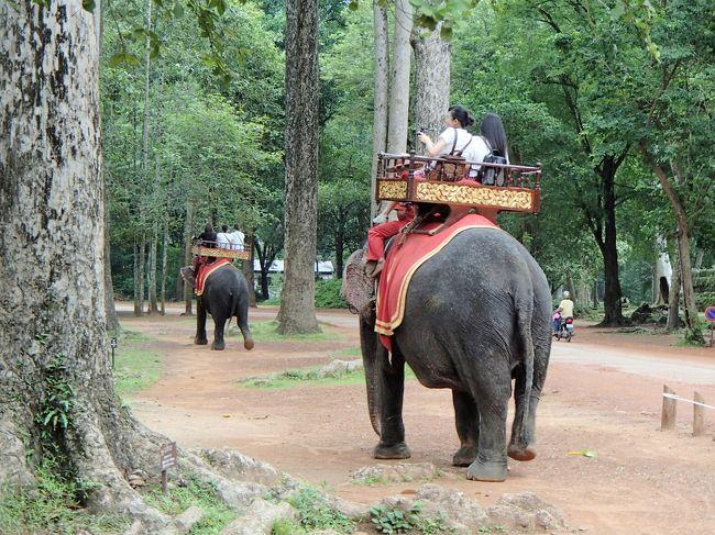 アンコールトムの象乗り