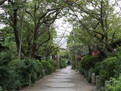 宝戒寺 参道  白萩で知られていますが、咲いていない? 流鏑馬を見るのに時間がないので、後ほど再訪することに。