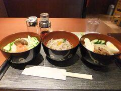 仙台、小牛田、一関と乗り継ぎ、盛岡駅に。盛岡名物のわんこそば、冷麺、ジャージャー麺の三点セット。お椀のデザインは、盛岡のゆるキャラのわんこきょうだいでした。