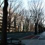 昨夜は疲れから普段ではあり得ないほど早寝しました。おかげで無事早起き出来たので混んでくる前に移動してしまいましょう。けやき並木の定禅寺通りを地下鉄勾当台公園駅に向けて歩きます。冬に行われる光のページェントはこのあたりでしたっけ?ピーチで気軽に来られるようになったのでまたその時期にも来てみたいものです。