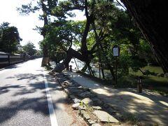 武家屋敷の前にひろがる通りの塩見縄手。