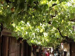 イェメニジレル・ギルド・バザール(Tarihi Yemeniciler Arastası)  サフランボル(Safranbolu)最大のモスク、キョプリュリュ・マフメット・パジャ・ジャーミィ(Köprülü Mehmet Paşa Camii)の近く、イェメニ(Yemeni)と呼ばれる靴を作っていたギルド(Lonca)の跡に設けられたバザールです。通りは葡萄の房で覆われているため、夏でも涼しげです。   イェメニジレル・ギルド・バザール:http://safranboluturizm.gov.tr/page.asp?ctg=2&id=7 キョプリュリュ・マフメット・パジャ・ジャーミィ:http://safranboluturizm.gov.tr/page.asp?ctg=2&id=10 ギルド:https://ja.wikipedia.org/wiki/%E3%82%AE%E3%83%AB%E3%83%89