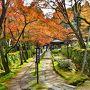 2015紅葉(5) 鮮やかで上品な景勝・湖東三山の一つ 金剛輪寺