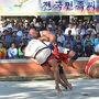 朝鮮相撲の特徴は土俵に出ても負けではありません。 相手に膝をつかせれば勝利です。要はぶっ倒すしかありません。
