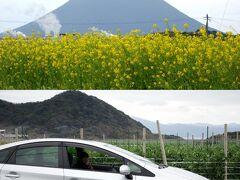 チェックアウトしてドライブを満喫チウ このときはじめて開聞岳を見た 見事な三角形  道の駅 http://io-kaido.com/
