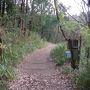 林道バイクでハイキング~丹生山から帝釈山