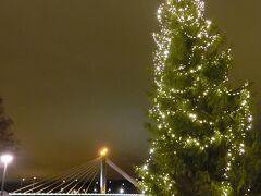 ロウソク橋とツリー。 さっむい…