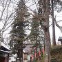 山形の旅02 若松寺と日帰り温泉とおいしい山形。
