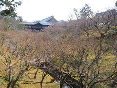 さて、お次はJR東福寺駅まで戻り、東福寺を訪れました。