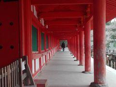 春日大社 回廊が素敵だった。  奈良公園の隣で、ほんと敷地が広かった。 ここまに来るまでの参道が長い長い長い。