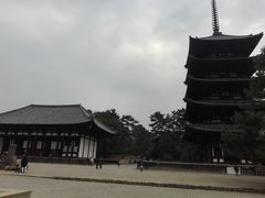 興福寺にも行きました。奈良時代からあるみたい。