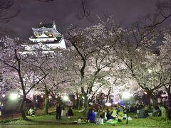 大阪城天守閣の下に広がる絶景空間の中では、その素敵な春の風景に酔いしれる大勢の花見客の姿がありました