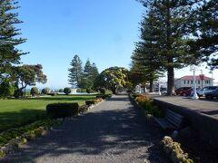 12月29日 ロトルアからパウポ湖を経由して220 km南のネーピア(Napier)にきました。海岸沿いに公園が整備されています。マリーン・パレードと呼ばれています。天気も良かったので散歩しました。ここでもニュージーランド・クリスマスツリーの赤い花が沢山咲いていました。宿泊ホテル(Scenic Hotel Te Pania)はマリーンパレード沿いにあり、部屋から美しい海岸の景色を楽しむことができました。