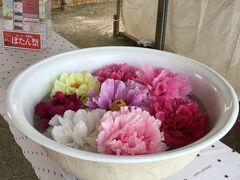 松江市大根島ばたん祭りにて。