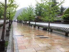 山陰の小京都〜城下町津和野 殿町通りを散策しました。  石畳の通り沿いに、武家屋敷となまこ壁が続く風景! 再度見たかったので満足!