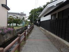 紬問屋「山清」の裏路地の川沿いを歩いてみますね。
