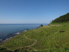 さらに北上して、千枚田へ。 観光バスも立ち寄る観光スポットでした。