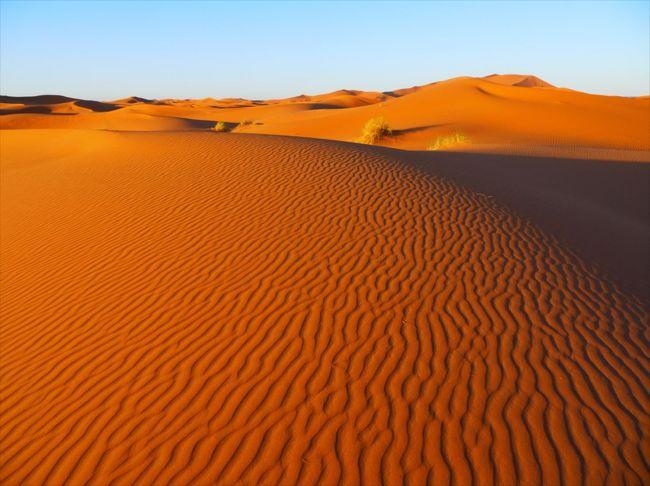メルズーガ大砂丘 (サハラ砂漠)