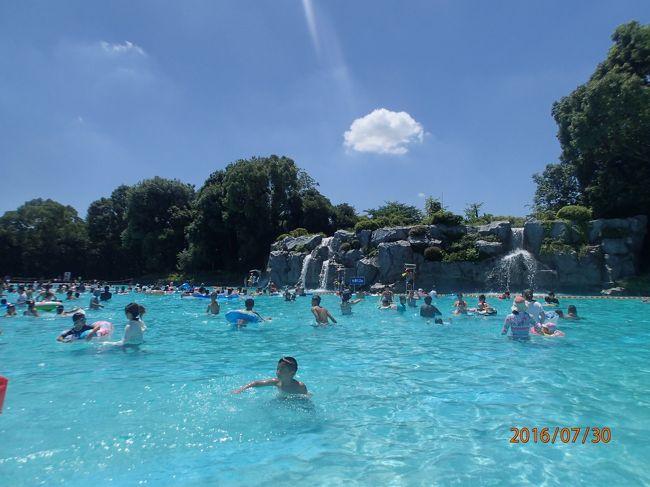 昭和 記念 公園 レインボー プール