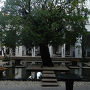 郊外遺跡散策(東洋のモナリザが微笑むバンテアイ・スレイ / 川に彫られたレリーフのクバール・スピアン / 王朝最初の都城ロリュオス遺跡群) カンボジア旅行6日間2日目