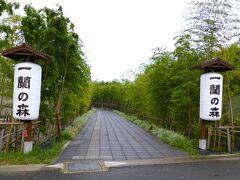 2014年7月にオープンした「一蘭の森」  工場でありラーメンも24時間食べれます  東京ドーム2個分の広大な敷地に 「音と光の茶庭」「ラーメン生産工場」「とんこつラーメン博物館」「食事処」 「お土産販売所」の5つのエリアがあり  大人も子供も楽しめるラーメンのテーマパーク出現