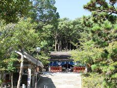木々に囲まれた静かな神社。妻は御朱印とお守りをいただく為に社務所へ。