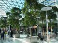 乗り継ぎのコペンハーゲン空港の憩いの場所