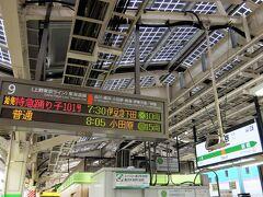 東京駅から、踊り子号で、伊豆急下田駅まで。
