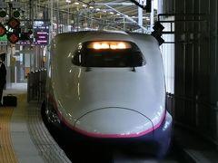 はやぶさ102号は7:19に仙台到着。 そこからは7:34発やまびこ208号で福島に向かいます。