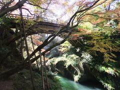 こおろぎ橋から鶴仙渓を歩いてみると、紅葉は少し早いですけど、きれいでした。