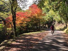 時期的にすごくよくて、坑道に向かう道路沿いに紅葉がきれいでした。