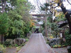 バス待ちの合間に、すぐ近くの新潟大神宮も見て回ります。それほど大きい神社ではありません。