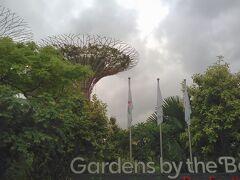 次はガーデンズ・バイ・ザ・ベイ 植物園へ。