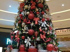 地下1階に降りました。クリスマスツリーが見事です。これが目印。 南国でも雪はなくても、クリスマスはクリスマス。