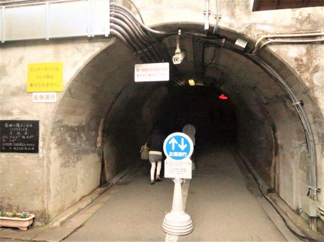 袋田の滝1/3 入場・観瀑トンネルの先 3