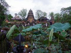 Saraswati Templeは写真で見て、何故か今まで来たことなかったので来て見たかったところ。