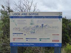 この付近はポートキャンベル国立公園(Port Cambell National Park)です。12使徒から車で数分の距離にロック・アード・ゴージ(Loch Ard Gorge)があります。