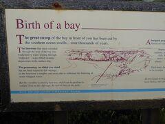 目の前に広がる湾は、海が数千年にわたって陸を浸食した結果できたものと説明されています。ここはベイ・オブ・アイランド(Bay of Islands)で海浜公園の名前の由来になっている場所です。小さ目ですが奇岩が湾内に散在しています。