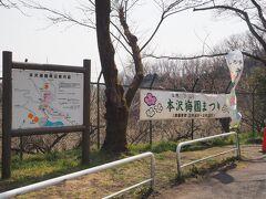 少し足をのばして城山湖へ行こうと!  途中で梅園があり、ちょっとのぞいて見ました。  本沢梅園でした。