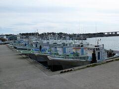 すぐ横には舞阪漁港