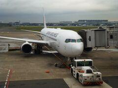 羽田空港から阿蘇くまもと空港までJALに乗りました。 機材はB767でした。