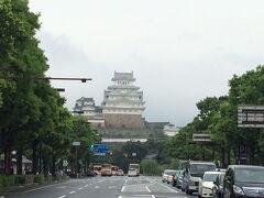 姫路にどんと構える白鷺城こと姫路城。平成の大修理を終えてかなり白くなったようです。