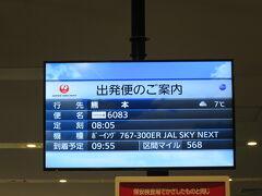 羽田空港から8時5分発のJAL625便に乗り熊本へ行きます。 こちらは雨が降っていますが、熊本は曇りのようです。