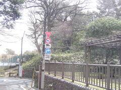 お花見候補地「多摩川大公園」